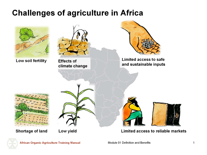Pictures of challenges of agriculture in Africa